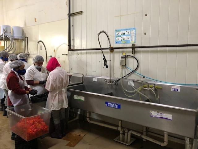 The Organic Food Incubator